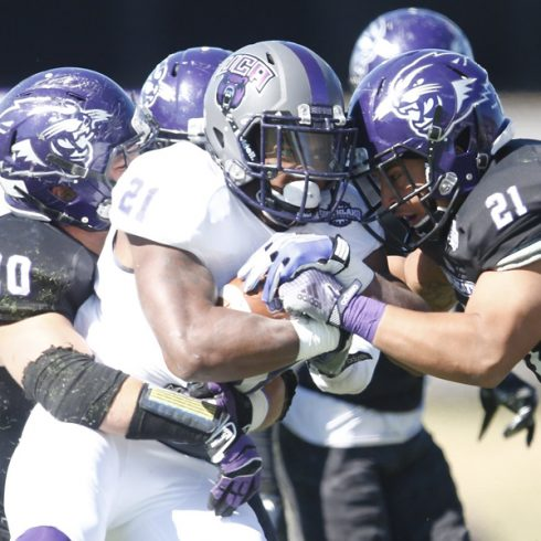 The Wildcats' upset of Central Arkansas knocked the Bears out of first place in the Southland Conference.