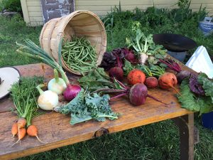 Produce grown at Little Acorn Farm