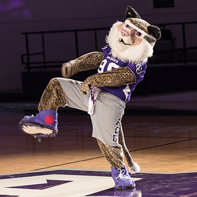 Today's Willie the Wildcat is portrayed by students.