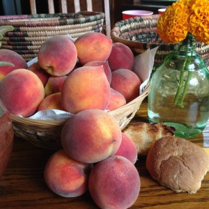 Peaches from the Jessup Peach Orchard