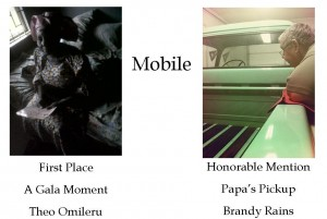 Mobile Winners for blog 4-13