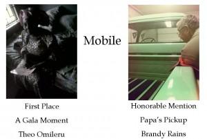 Mobile Winners for blog 4-13