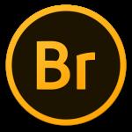 Adobe-Br-icon