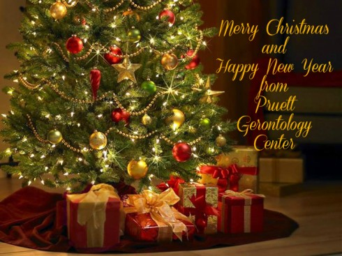 Christmas Wishes from PGC