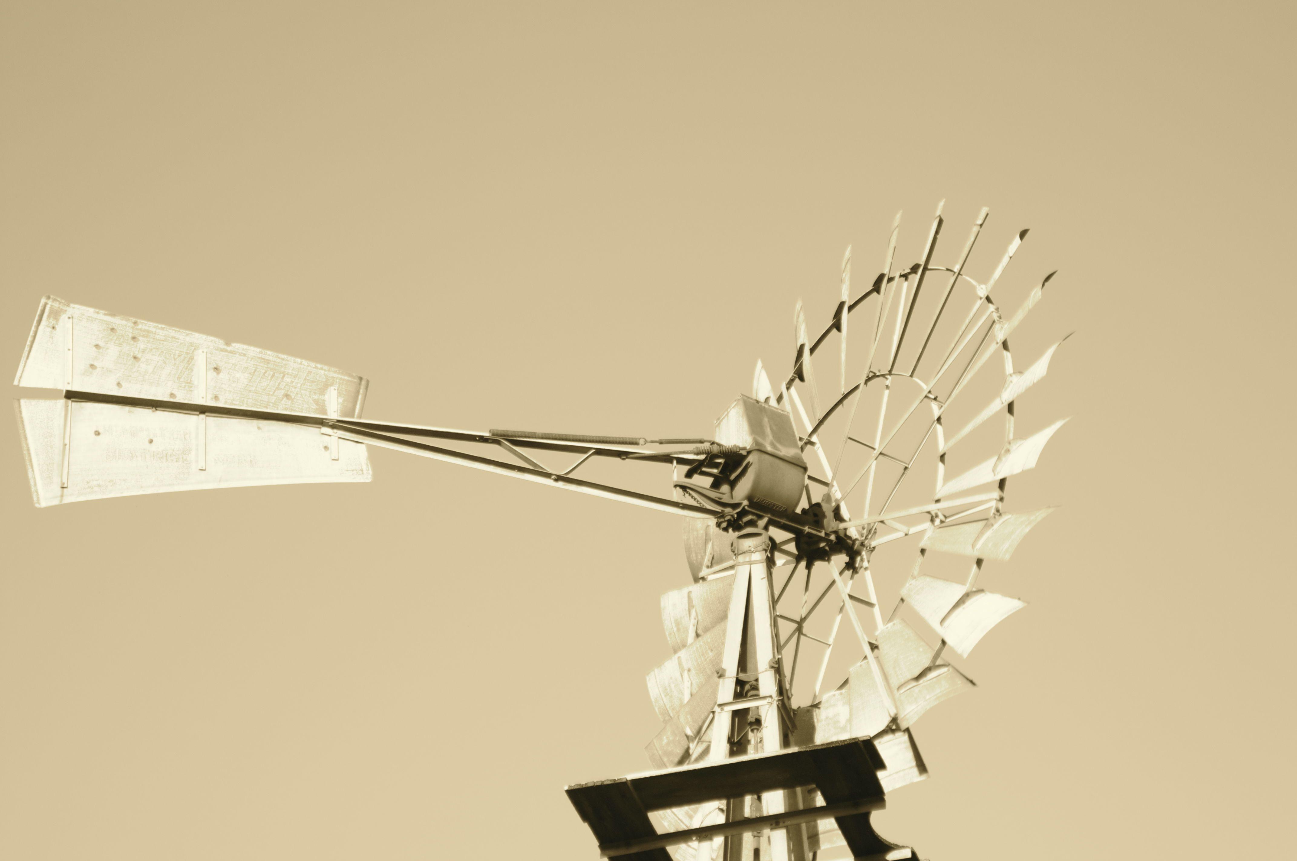Grüne gruene windmill suanna davis s site