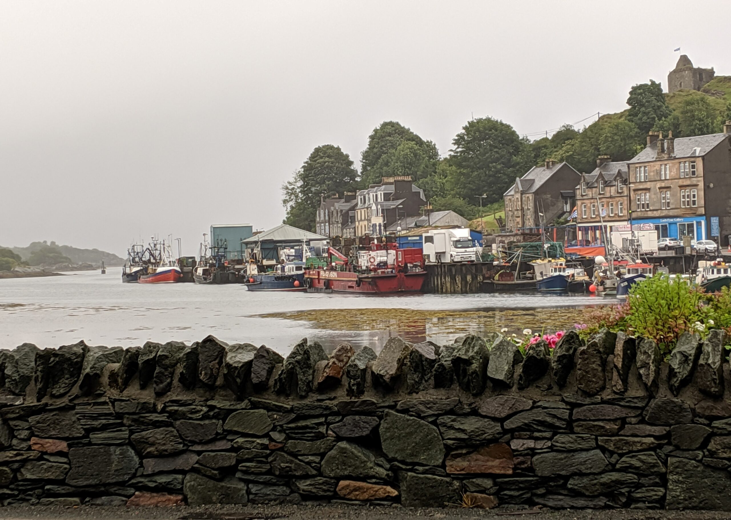 Tarbert harbor with stone wall in foreground. On the right a hill slopes steeply down to the harbor with village buildings clustered next to the water. At the top of the hill at right is a ruined castle.