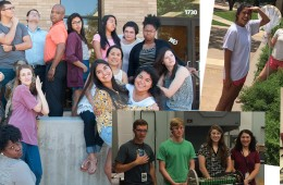 Summer Research Round Up 2015