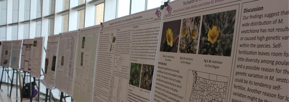 2014 Undergraduate Research Festival